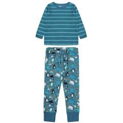 Pyjamas - Arctic
